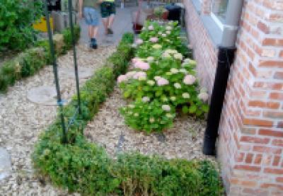Kon. Landelijke Gilde Hakendover is blij met het ondersteunen van de schooltuin in Hakendover